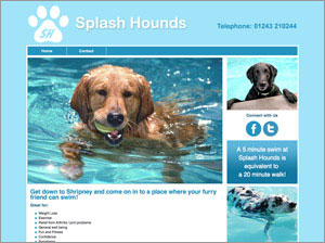 Website Splash Hounds